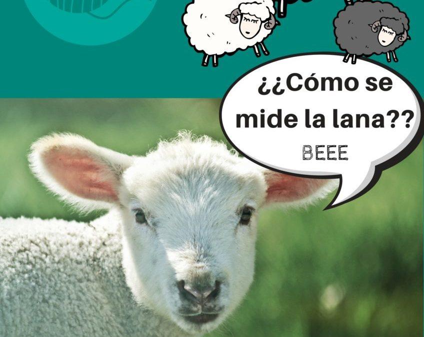 ¿Cómo se mide la calidad de la lana? Haz click aquí para saber más.